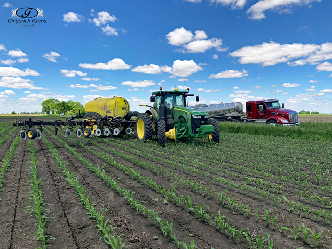 Sidedress at Gingerich Farms