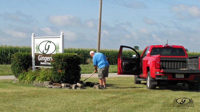 Ed working at Gingerich Farms