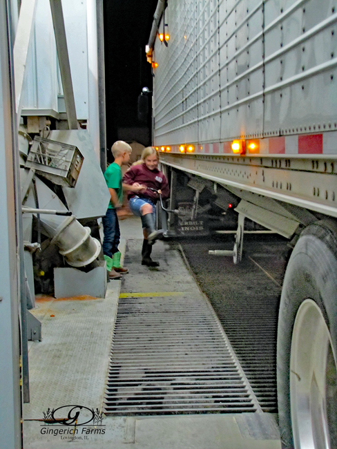 Unloading a truck at Gingerich Farms