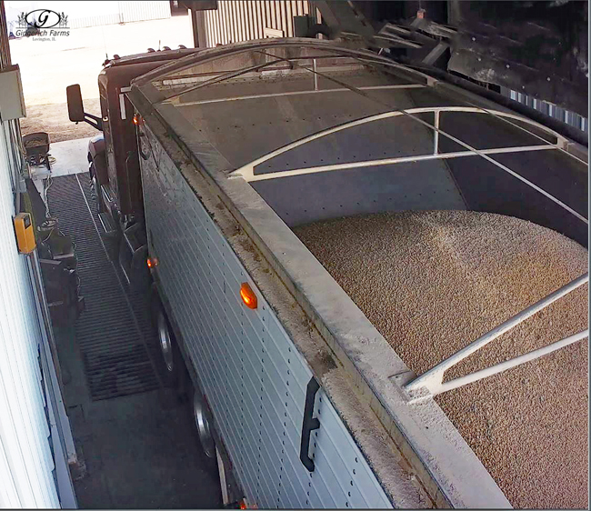 Last load of 2018 beans at Gingerich Farms