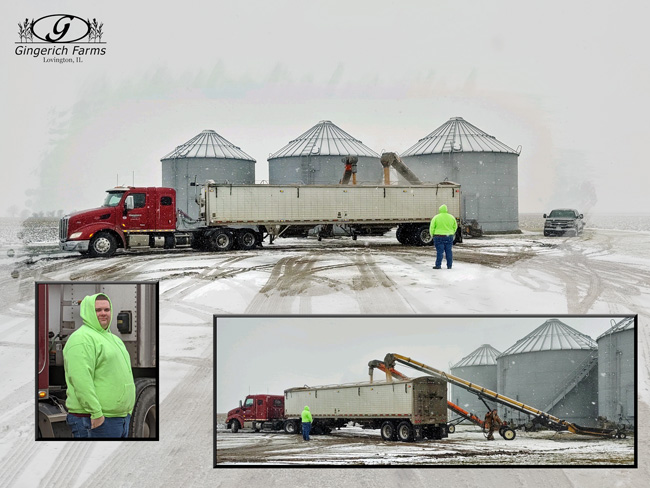 Loading in snow at Gingerich Farms
