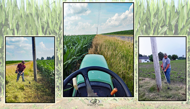Mowing & trimming at Gingerich Farms