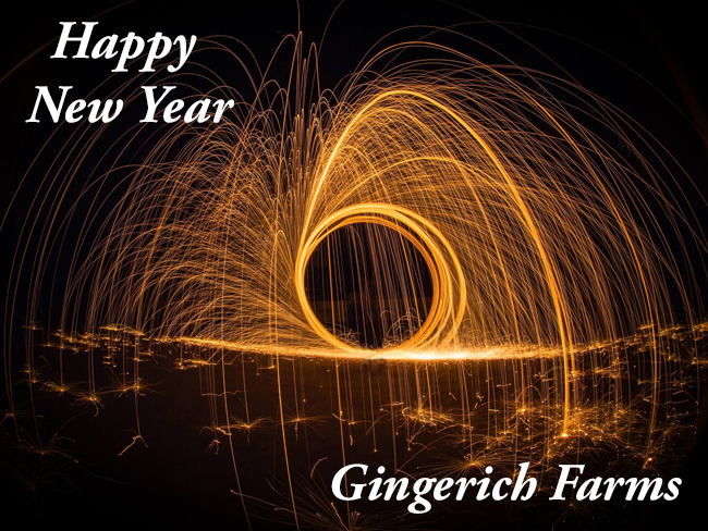 New Yr Pix - Gingerich Farms