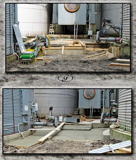 Concrete by dryer at Gingerich Farms
