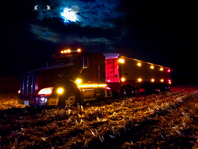 Truck at night - Gingerich Farms