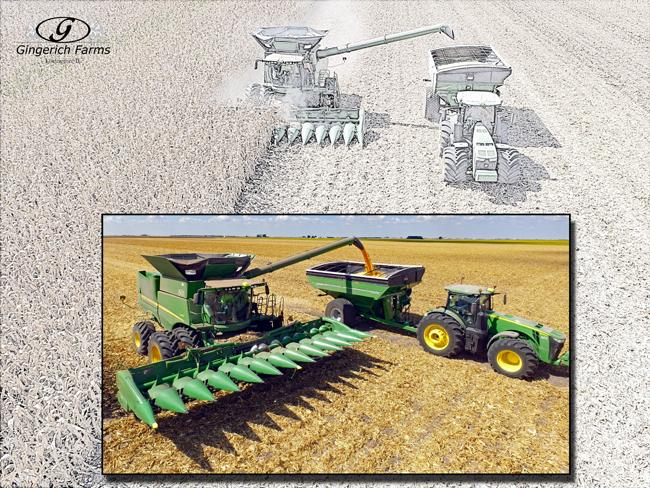 Plot Harvest - Gingerich Farms