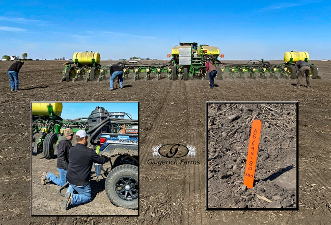 Marking rows - Gingerich Farms