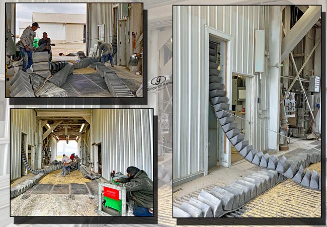 Conveyor belt going back - Gingerich Farms