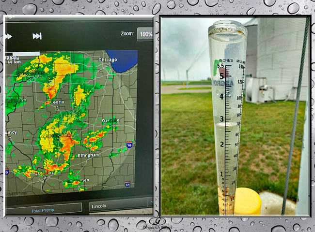 Rain - 7.21 at Gingerich Farms