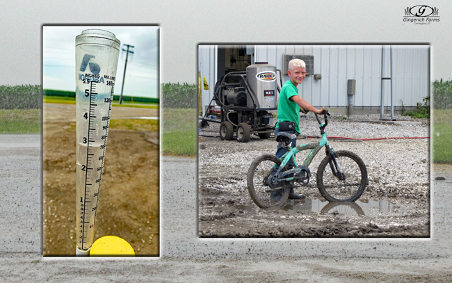 Rain gauge & Tyler in mud at Gingerich Farms