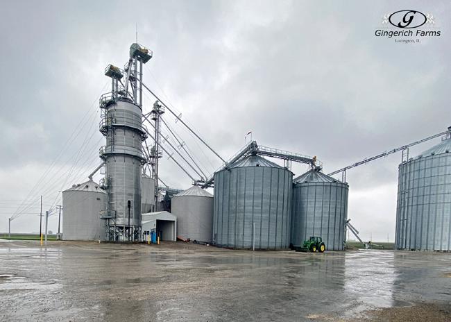 Rain - Gingerich Farms
