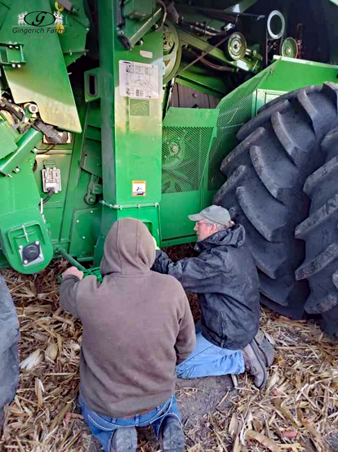 Working on combine - Gingerich Farms