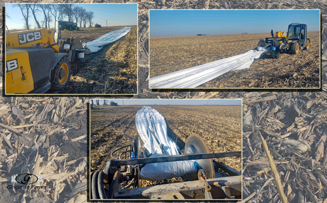Rolling bag - Gingerich Farms