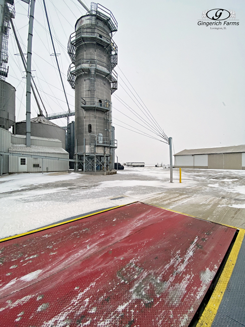 Grain Center & snow - Gingerich Farms