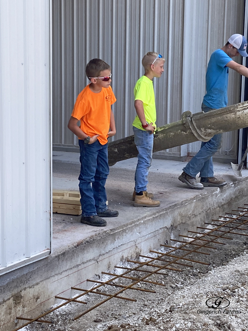 Supervising - Gingerich Farms