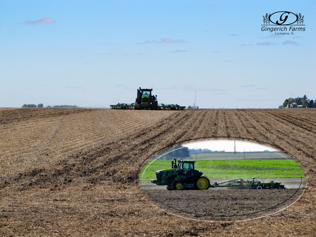 Strip-tilling at Gingerich Farms