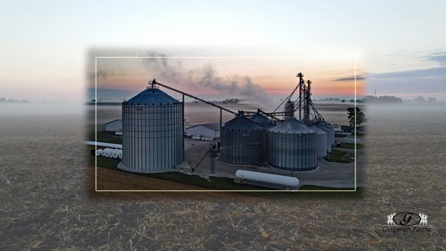 Foggy morning - Gingerich Farms