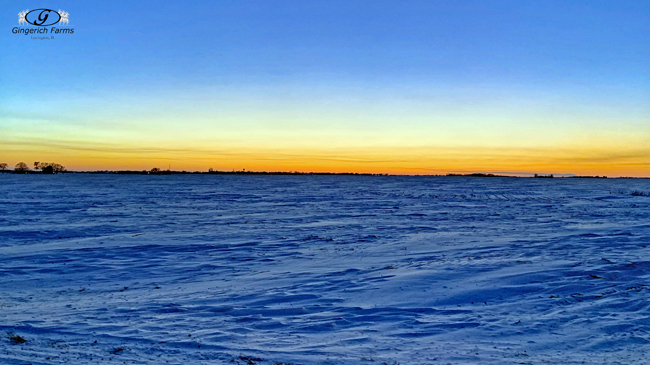 Snowy sunset - Gingerich Farms
