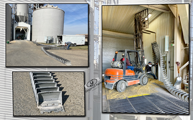 Conveyor belt - Gingerich Farms
