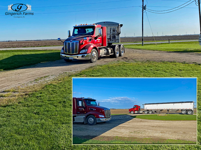 Truck coming to bin - Gingerich Farms