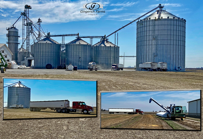 Truck coming - Gingerich Farms