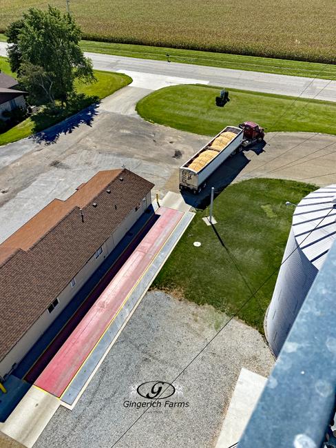 Grain truck - Gingerich Farms