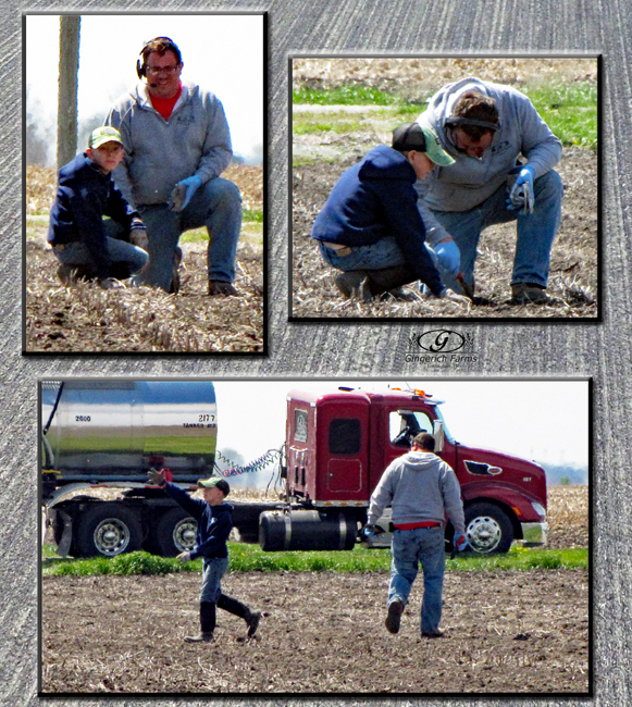 Next generation farmer at Gingerich Farms