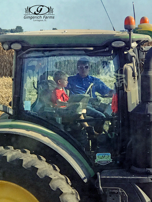 Driving Auger cart at Gingerich Farms