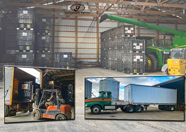 Unloading Seed - Gingerich Farms