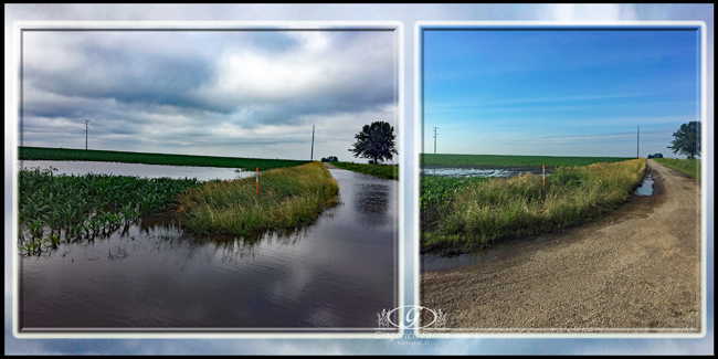 Difference in flooding at Gingerich Farms