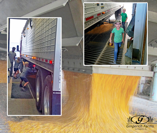 Unloading at Gingerich Farms
