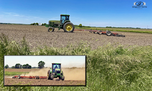 Working ground at Gingerich Farms