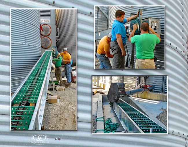 Conveyor work at Gingerich Farms