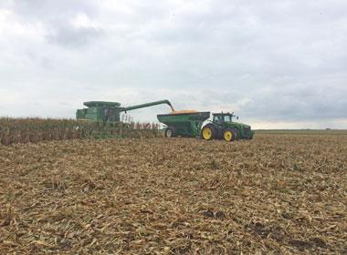 9/10/16 Harvest Time
