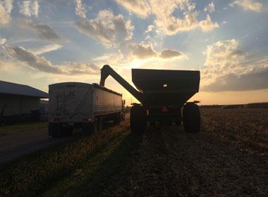 9/28/16 Harvest rolls on!